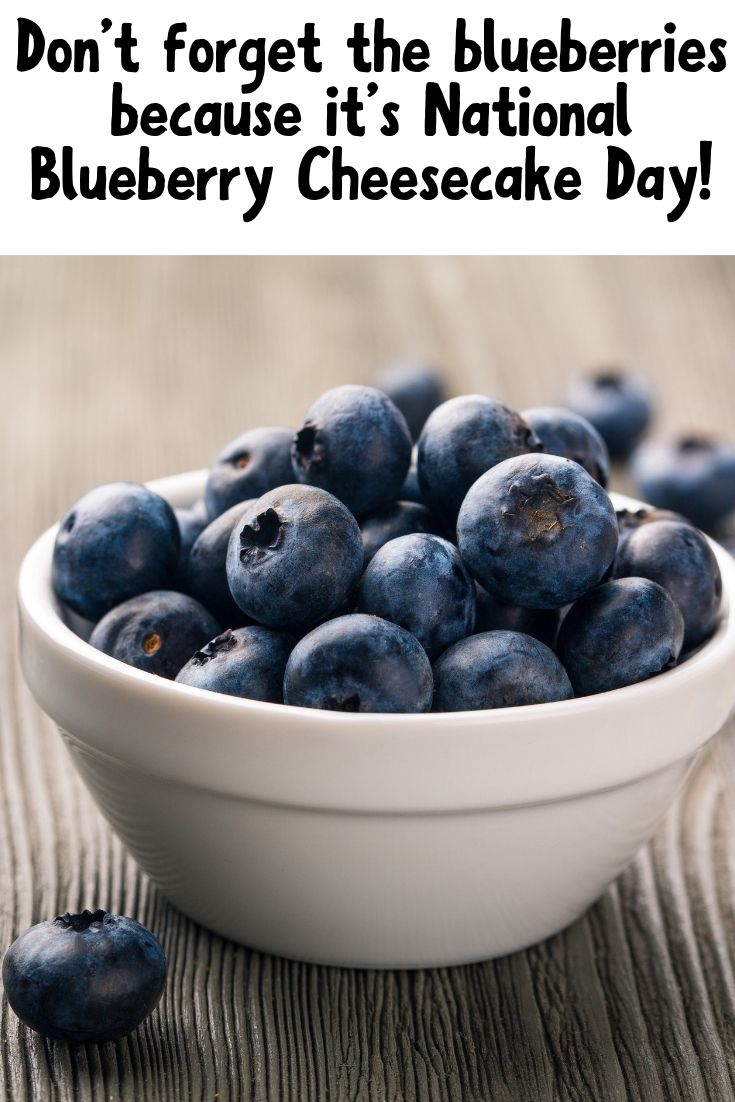 Pin with a bowl of blueberries at the bottom and the title of the post at the top in black letters.