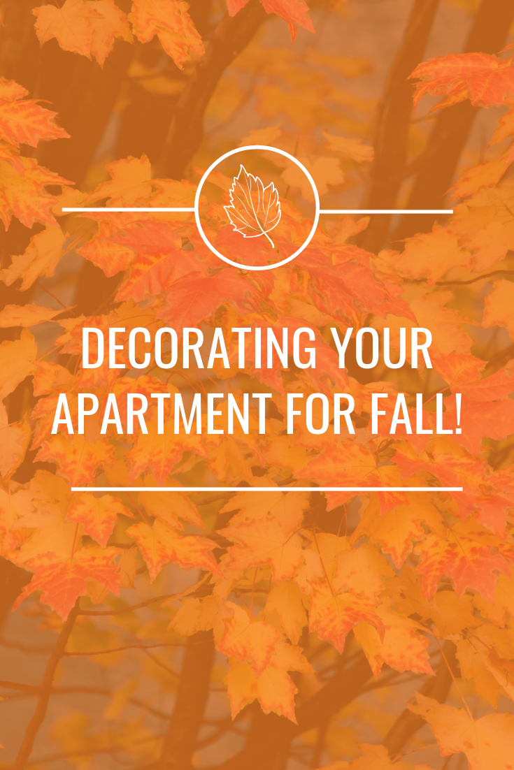 Decorating your apartment for fall doesn't have to be a hassle. There are some great and easy ways to make your apartment awesome for fall!