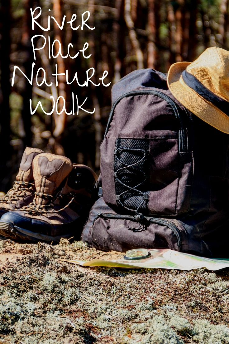 Thanksgiving is just days away and if you and your visiting guests wish to work up your appetite, take a trip to River Place Nature Walk where you can climb a natural staircase in the middle of the woods. It will feel like you're in a fairytale!